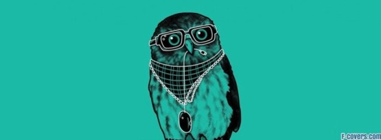 minimalistic-hipster-owl-facebook-cover-timeline-banner-for-fb