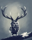 owl_deer_by_tanyabosyk-d5eobw7