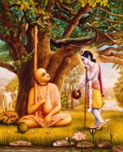 Advaita-Acharya-13-243x300