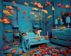 peces y sueños